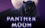 Вулкан автомат Panther Moon